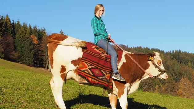 """Fest im Sattel sitzt Marlene (13) auf Kuh """"Sindi"""". (Bild: Gabriele Moser)"""
