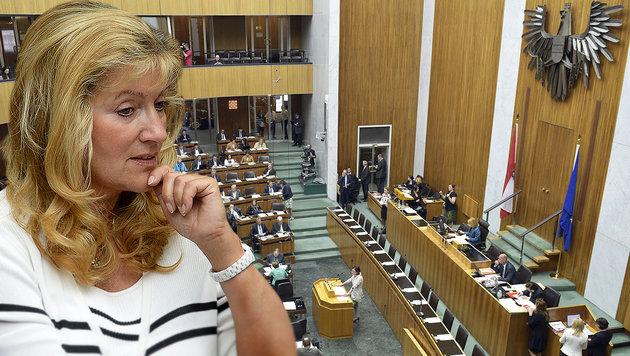 Debatte über zu viele Abgeordnete neu entbrannt (Bild: APA/ROLAND SCHLAGER, APA/HANS PUNZ)
