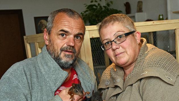 Gerhard und Gabriele Kaar leben für den Schutz von Wildtieren. (Bild: Markus Wenzel)