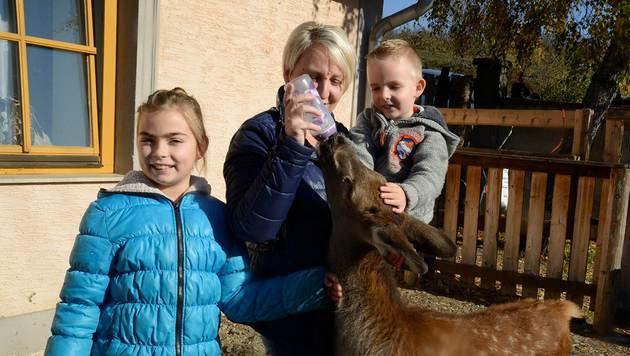 """Auch die Kinder aus der Nachbarschaft lieben """"Toni"""" sehr. (Bild: Pressefoto Weber)"""