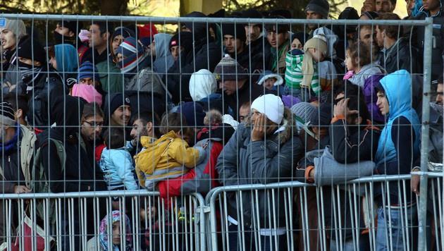 Großer Koalitionsstreit um kleinen Grenzzaun (Bild: AP)