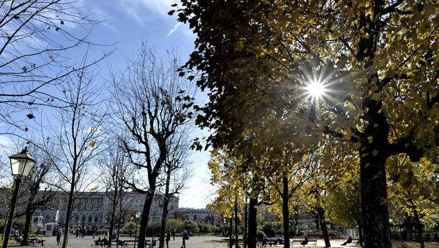 Bis zu 20 Grad: Traumhafte Herbsttage erwarten uns (Bild: APA/HERBERT NEUBAUER)