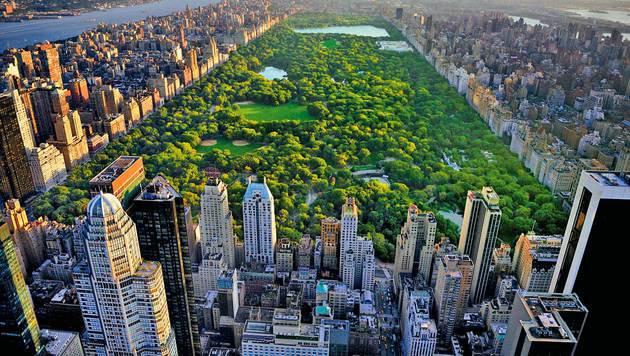 """Die """"grüne Lunge"""" von New York: der imposante Central Park im Herzen Manhattans (Bild: Fotolia)"""