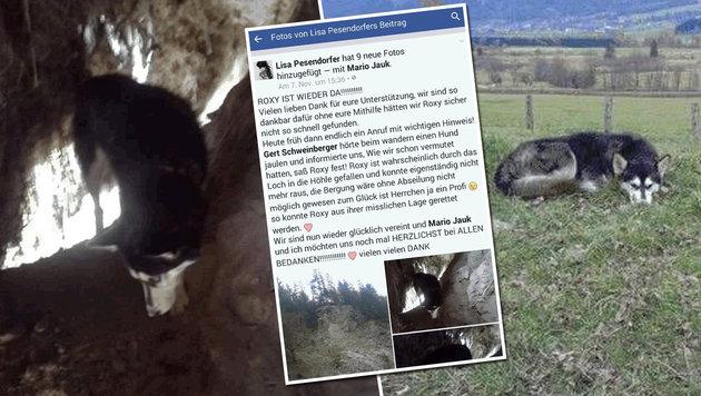 """Über Steirer """"Tierecke"""" Hund aus Höhle gerettet (Bild: facebook.com)"""