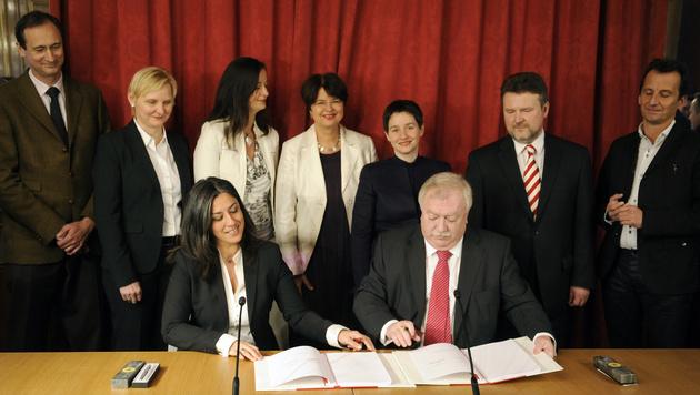 Das Foto der neuen Wiener Regierung wird sich 2015 nicht von jenem aus dem Jahr 2010 unterscheiden. (Bild: APA/ROLAND SCHLAGER)