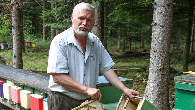 Berufsimker Franz Willinger freut sich, dass die Polizei den Honig-Dieb (88)angezeigt hat. (Bild: Matthias Lauber)