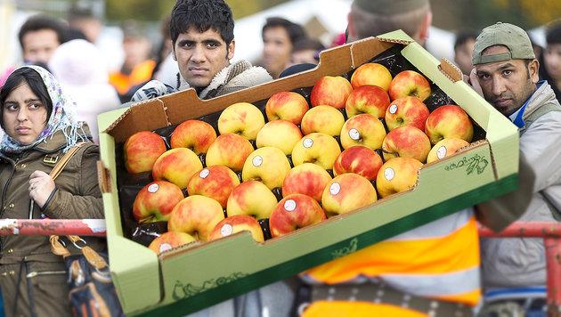 Spielfeld: Steirische Äpfel werden wieder verteilt (Bild: APA/ERWIN SCHERIAU, Jürgen Radspieler)