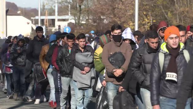Studie: Mehrheit für Grenzzaun und Aufnahmestopp (Bild: krone.tv)