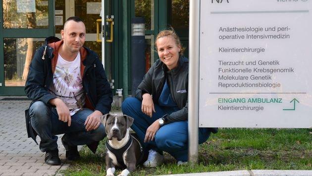 """Tierärztin Eva Schnabl-Feichter rettete den schwer verletzten """"Pacco"""". Sein Herrl ist dankbar. (Bild: Felizitas Steindl/Vetmeduni Vienna)"""