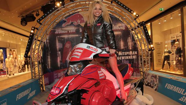 Pamela Anderson: Badenixe auf Rennschlitten (Bild: Starpix/Alexander Tuma)