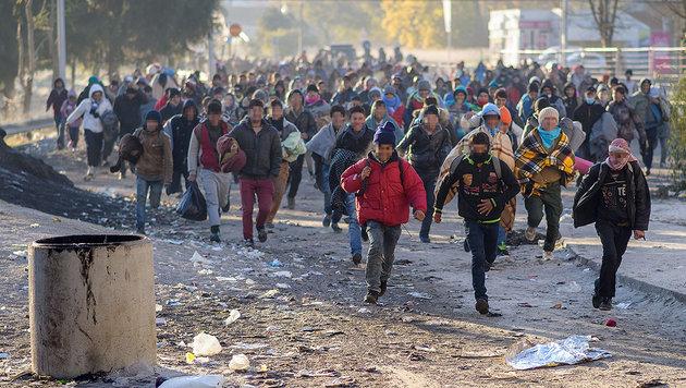 Migranten überqueren am 2. November die slowenisch-österreichische Grenze bei Spielfeld. (Bild: APA/AFP/Rene Gomolj)