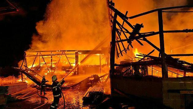 Steirisches Sägewerk in Flammen aufgegangen (Bild: APA/LFV FRANZ FINK)