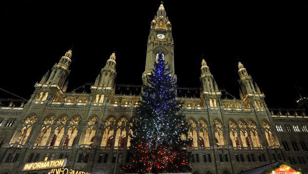 Christbaum am Rathausplatz leuchtet in Trikolore (Bild: APA/HERBERT PFARRHOFER)