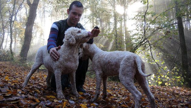 Meine Jagdgefährten: Andelko (mit dem gefundenen Trüffel), Betty & Candy (Bild: Stephan Schätzl)