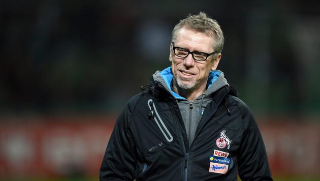 FC Köln möchte Peter Stöger langfristig binden (Bild: GEPA)