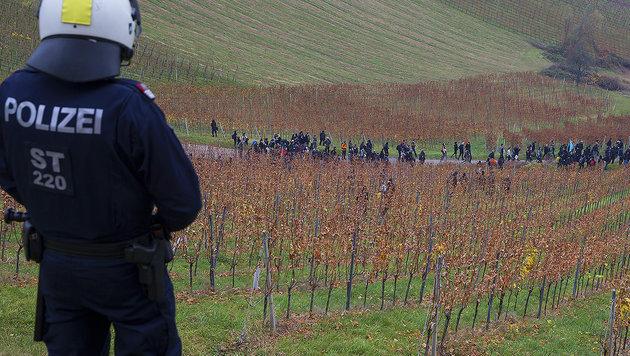 Grenzzaun: Weinbauern kündigen Gegenwehr an (Bild: APA/ERWIN SCHERIAU)