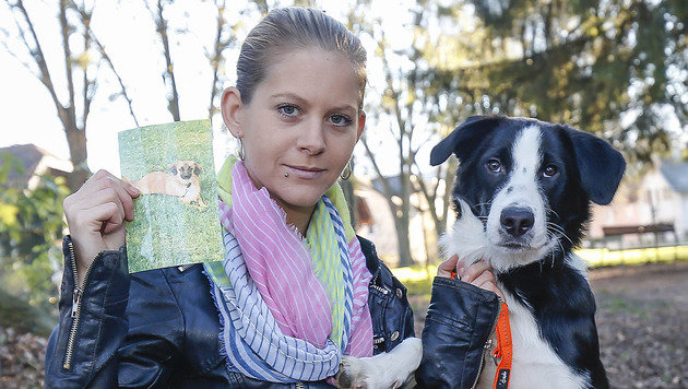 """Stefanie G. mit einem Bild von """"Sammy"""" und ihrem Border Collie (Bild: Markus Tschepp)"""