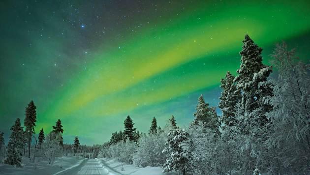 Grüne Polarlichter sind in Lappland häufig zu beobachten. (Bild: fotolia.com)