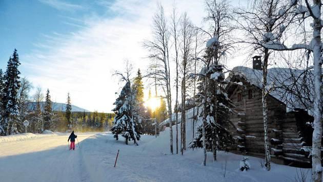 Langlaufen ist in Lappland ein Volkssport für Jung und Alt. (Bild: Andrea Thomas)