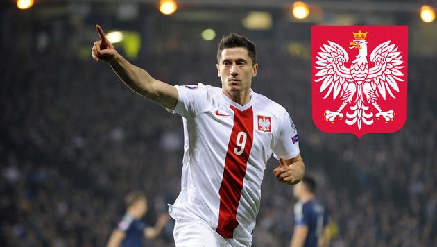 EURO 2016: Polen darf dank Lewandowski träumen (Bild: APA/AFP/Andy Buchanan)