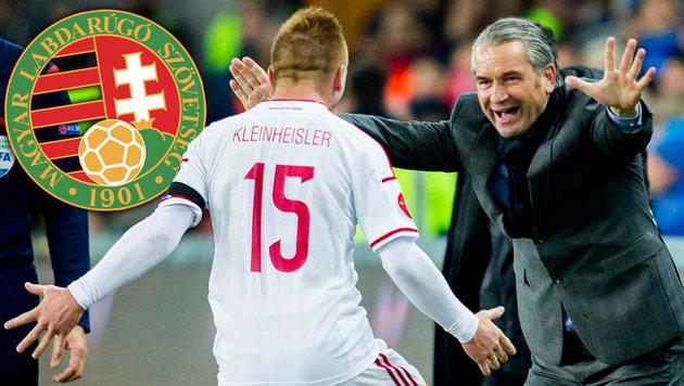 EURO 2016: Das große Comeback von Ungarn (Bild: APA/EPA/Vegard Wivestad Groett)