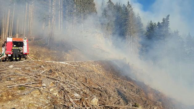 Die Löscharbeiten im steilen Gelände zehrten an den Kräften der Feuerwehrleute. (Bild: APA/FF LEOBEN-STADT/M. SCHWARZ)