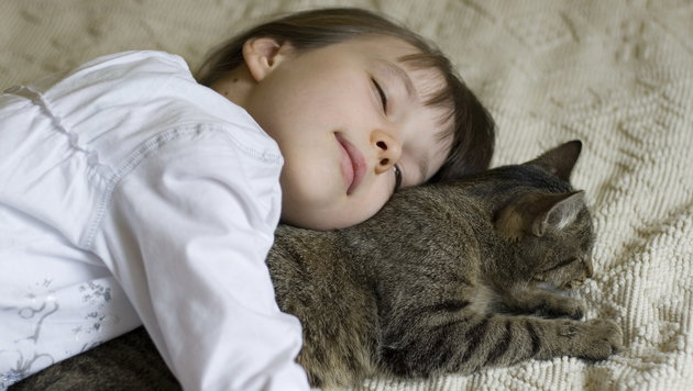 Katzen und Kinder: Darauf sollten Eltern achten (Bild: thinkstockphotos.de)