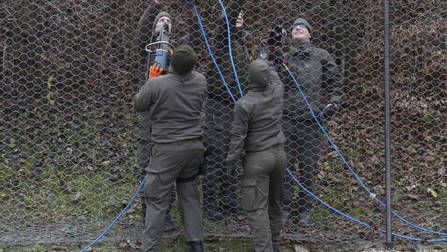 """Klug: """"Das Beste aus der Situation machen"""" (Bild: APA/ERWIN SCHERIAU)"""