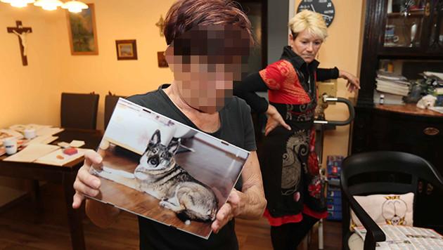 """Das 72-jährige Vergewaltigungsopfer mit seiner Tochter und einem Bild von Hündin """"Gina"""" (Bild: Reinhard Judt)"""