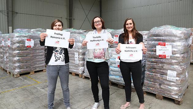 Online-Shop will Weltrekord-Futterspende sammeln (Bild: Tierschutz-Shop)
