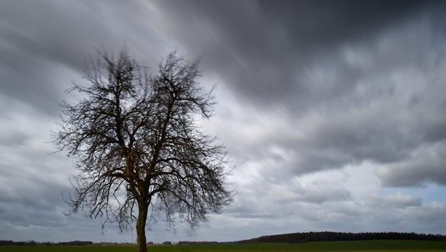 Kommende Woche wird kühl und wechselhaft (Bild: APA/dpa-Zentralbild/Patrick Pleu (Symbolbild))