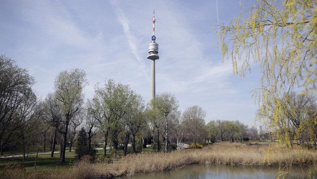 Donauturm an Wiener Unternehmer verkauft (Bild: APA/GEORG HOCHMUTH)