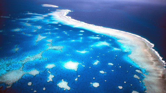 Das Great Barrier Reef vor Australien aus der Luft (Bild: Great Barrier Reef Marine Park)