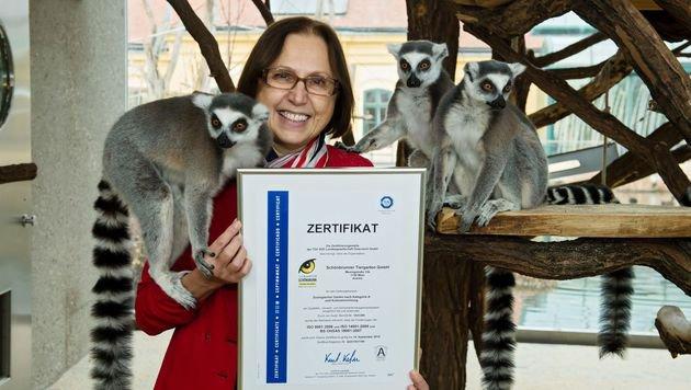 Tiergarten Schönbrunn vom TÜV Süd zertifiziert (Bild: Daniel Zupanc)