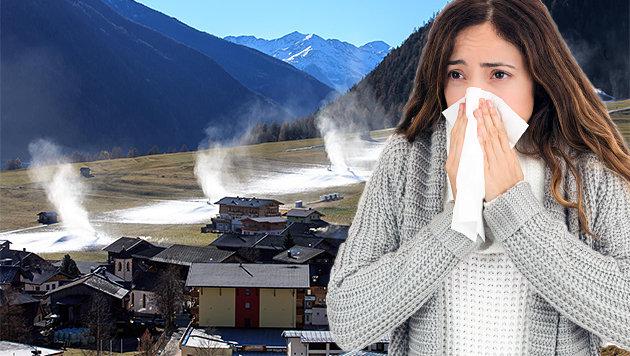Klimawandel bewirkt Pollen-Alarm zu Weihnachten (Bild: thinkstockphotots.de, EXPA)