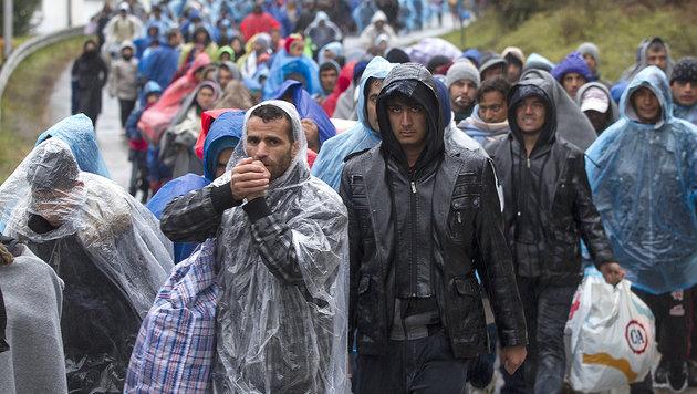 Die sechs größten Probleme der massiven Asylwelle (Bild: APA/ERWIN SCHERIAU)