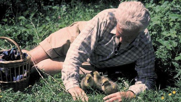 Nobelpreisträger Univ. Prof. Dr. Konrad Lorenz: Verspottet! (Bild: Archiv)