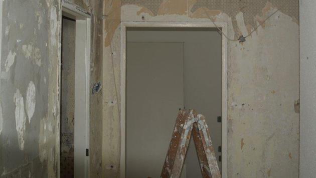Wiener Mieter musste Wohnung vor Auszug demolieren (Bild: Wilhelm M.)