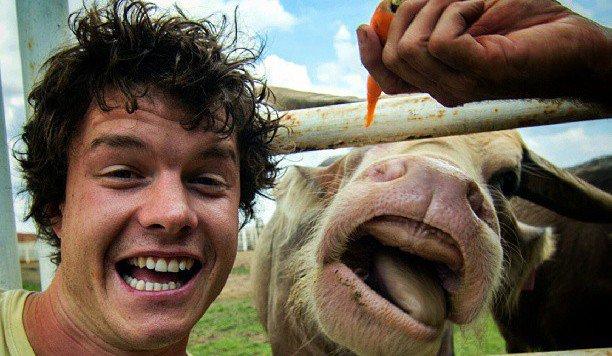 Junger Reisender begeistert mit Tier-Selfies (Bild: facebook.com/Allan Dixon)