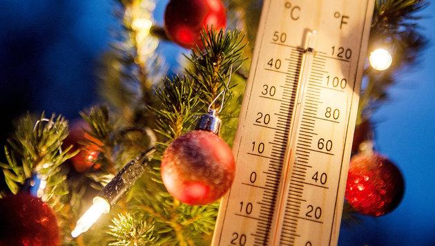 Grüne Weihnacht mit viel zu milden Temperaturen (Bild: APA/dpa/Christoph Schmidt)