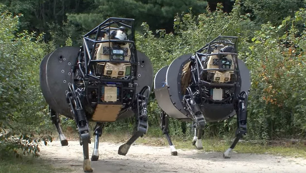 Googles Militär-Roboter untauglich fürs Militär (Bild: Boston Dynamics)