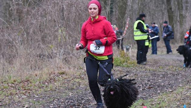 Zweites Laufhundesport-Rennen in Wien lädt ein (Bild: Katharina Schiffl)