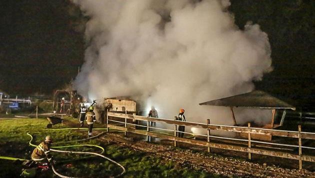 Die Feuerwehr bekämpfte mit 29 Mann und sieben Löschfahrzeugen den Brand. (Bild: Markus Tschepp)