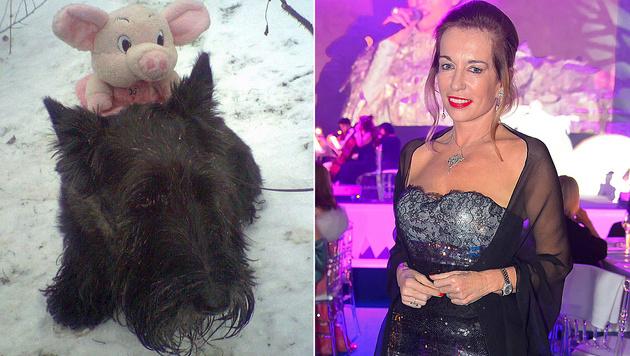 """Star-Chirurgin Dagmar Millesi trauert um ihren Hund """"Novo"""". (Bild: facebook.com/DagmarMillesi, Viennareport)"""