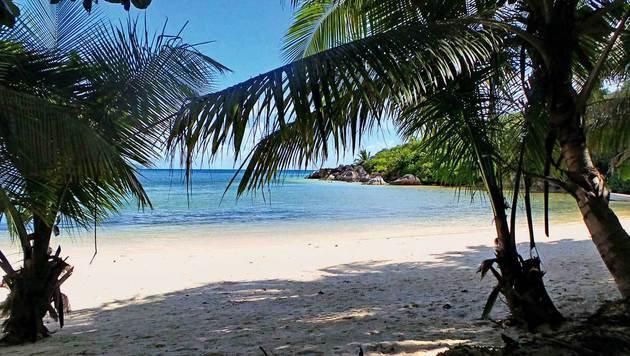 Überall auf den Seychellen: idyllische Strandkulisse und kristallklares Wasser (Bild: Irene Kain)