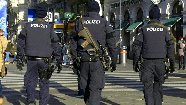 Polizeigehälter: DAS sind Peanuts, Frau Stenzel! (Bild: APA/Hans Punz)
