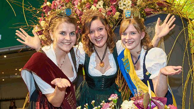 Die feschen Ballköniginnen (Bild: Alexander Tuma)