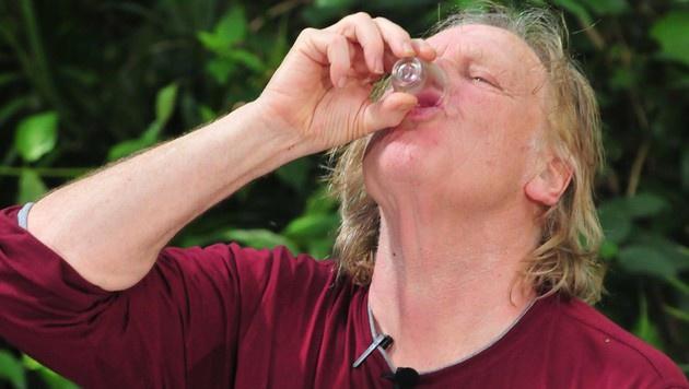 Die Dschungelkandidaten mussten schon an Tag eins zu zwei Prüfungen antreten. (Bild: RTL)