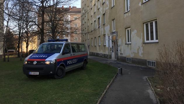 Toter Mann auf Wiese vor Mehrparteienhaus entdeckt (Bild: Andre Wanne)