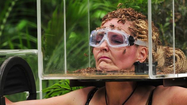Bei der Dschungelprüfung müssen die Camperinnen durchhalten und Fragen beantworten. (Bild: RTL)